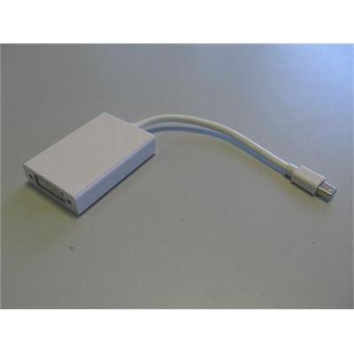 8 Ware Mini Active Display Port to DVI Adapter