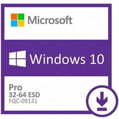 Windows 10 Esd