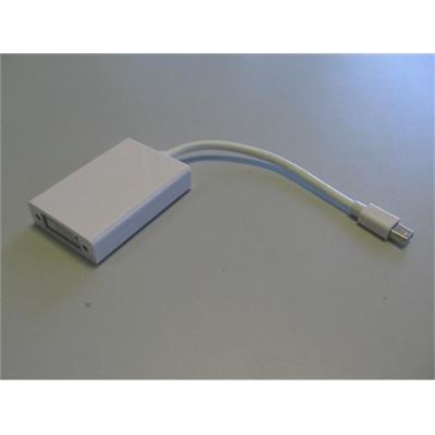 8 Ware Mini Active Display Port to DVI Adapter
